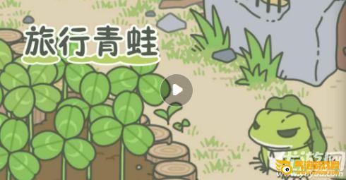 《养青蛙游戏叫什么名字》养青蛙的游戏 很火的养青蛙游戏叫什么 模拟养青蛙的游戏在哪下载