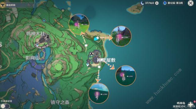原神绯樱绣球获取路线攻略:绯樱绣球采集分布点[多图]图片8