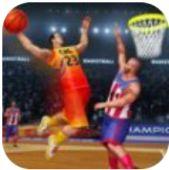 狂热的职业篮球明星安卓版