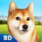 玩你的狗:芝犬