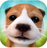模拟狗狗安卓版