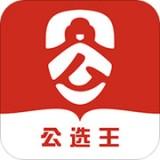 公选王遴选网