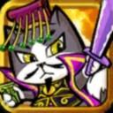 猫猫斗你玩