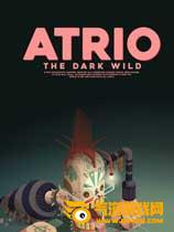 阿特里奥:黑暗荒野
