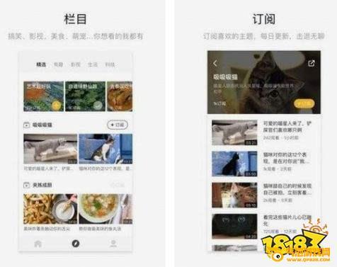 菠萝视频app安卓下载